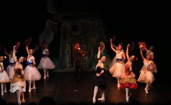 Ballet de repertório Dom Quixote