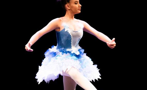História do Ballet Pássaro Azul - Princesa Florine